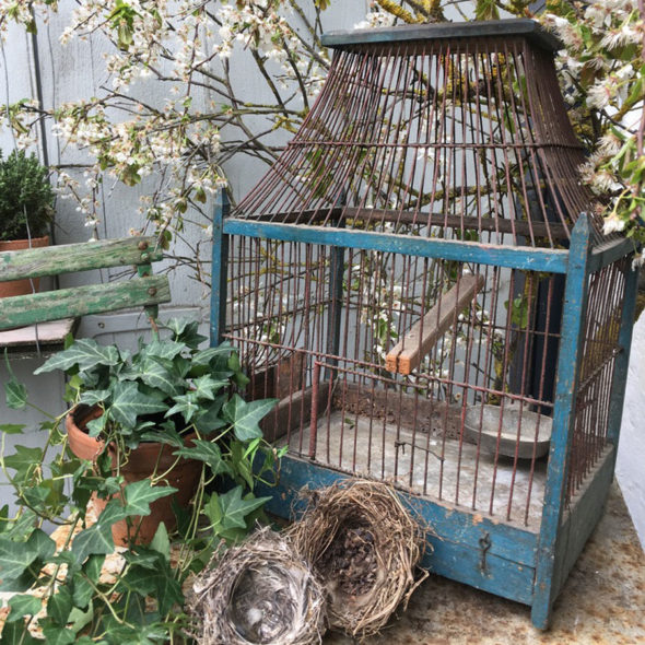 Cage 1900 – J 265